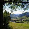 Panorama vom Dilgerbühl
